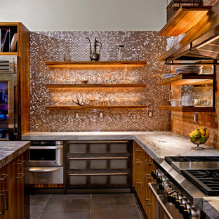 Design ideas for a contemporary kitchen in Philadelphia with stainless steel appliances.