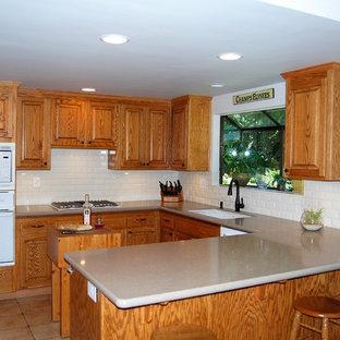 サンフランシスコの中サイズのエクレクティックスタイルのおしゃれなキッチン (アンダーカウンターシンク、レイズドパネル扉のキャビネット、中間色木目調キャビネット、クオーツストーンカウンター、白いキッチンパネル、サブウェイタイルのキッチンパネル、白い調理設備、テラコッタタイルの床) の写真