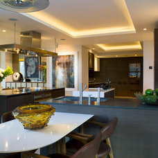 Contemporary Kitchen by Renovation Boutique
