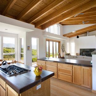 Imagen de cocina contemporánea, extra grande, abierta, con armarios estilo shaker, puertas de armario de madera clara, electrodomésticos de acero inoxidable, suelo de madera en tonos medios y una isla