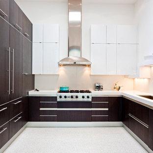 Moderne Küche mit flächenbündigen Schrankfronten in Dallas