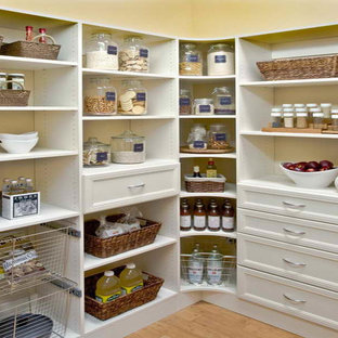 Mid-sized transitional kitchen pantry appliance - Mid-sized transitional medium tone wood floor and brown floor kitchen pantry photo in New York with recessed-panel cabinets and white cabinets