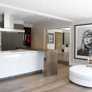 Large contemporary kitchen appliance - Kitchen - large contemporary l-shaped light wood floor and brown floor kitchen idea in New York with flat-panel cabinets, white cabinets, stainless steel appliances and an island