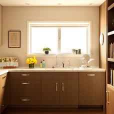 Modern Kitchen by Matarozzi Pelsinger Builders