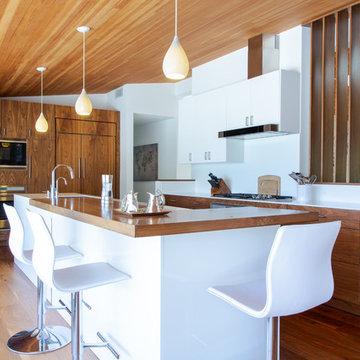 Palisades Contemporary kitchen
