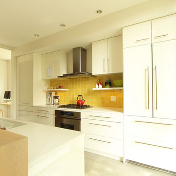 Paneled Refrigerator Blends Seamlessly Into the Kitchen