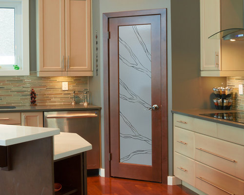 kitchen glass cabinets pantry door ideas houzz 1766