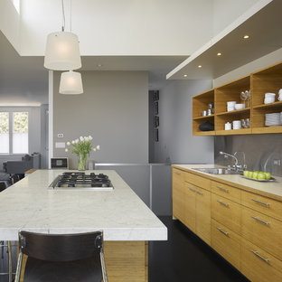Mid-sized contemporary open concept kitchen ideas - Inspiration for a mid-sized contemporary single-wall dark wood floor open concept kitchen remodel in San Francisco with a single-bowl sink, open cabinets, metallic backsplash, light wood cabinets, marble countertops, stainless steel appliances and an island