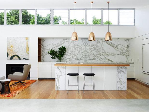 Contemporary Kitchen Pavilion House