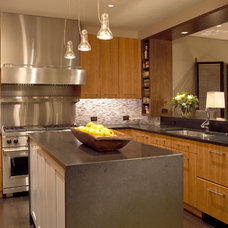 Contemporary Kitchen by Robyn Shapiro Design