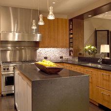 Contemporary Kitchen by Robyn Shapiro Design