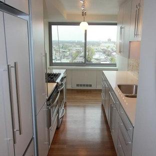 フィラデルフィアの小さいモダンスタイルのおしゃれなキッチン (アンダーカウンターシンク、フラットパネル扉のキャビネット、白いキャビネット、クオーツストーンカウンター、マルチカラーのキッチンパネル、トラバーチンの床、シルバーの調理設備の、濃色無垢フローリング) の写真