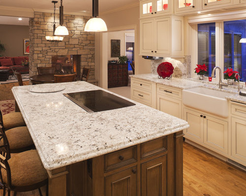 Arctic White Granite Houzz