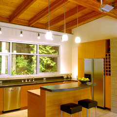 modern kitchen by Coates Design Architects Seattle