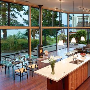 Modelo de cocina minimalista, abierta, con fregadero de un seno, armarios con paneles lisos, puertas de armario de madera oscura, electrodomésticos de acero inoxidable y encimera de cuarzo compacto