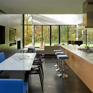 Diseño de cocina comedor contemporánea con armarios con paneles lisos, puertas de armario de madera en tonos medios, electrodomésticos de acero inoxidable, suelo de cemento y una isla