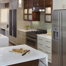 Contemporary Kitchen by Artistic Designs for Living, Tineke Triggs