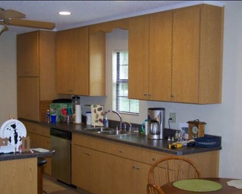 Charlotte kitchen design ideas renovations photos with for Charlotte kitchen cabinets