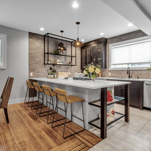 75 Beautiful Contemporary Kitchen Ideas Pictures Design