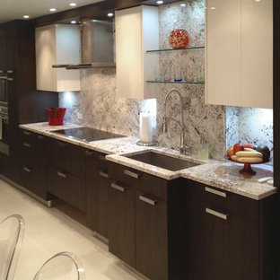 Contemporary kitchen ideas - Kitchen - contemporary kitchen idea in New York