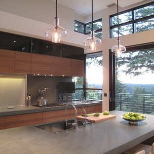 Kitchen - contemporary kitchen idea in Seattle with stainless steel appliances