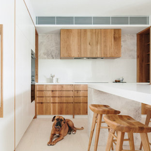 Mid-sized scandinavian kitchen in Sydney.