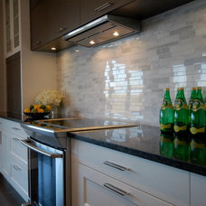 Contemporary Kitchen by Fran Loga - Redl Kitchens