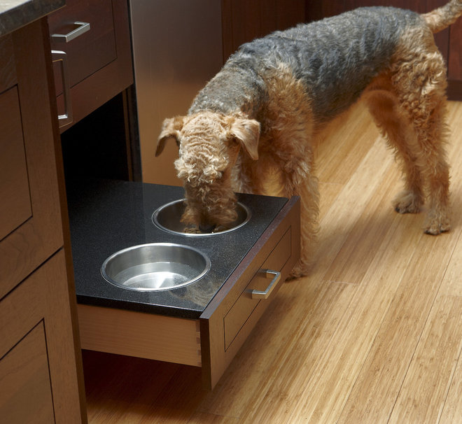 Pullout Kitchen Drawer with Dog Bowls