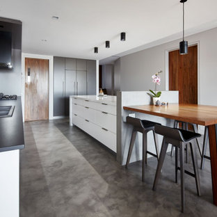Contemporary kitchen in Sydney with a double-bowl sink, flat-panel cabinets, concrete floors, with island, grey floor and black benchtop.