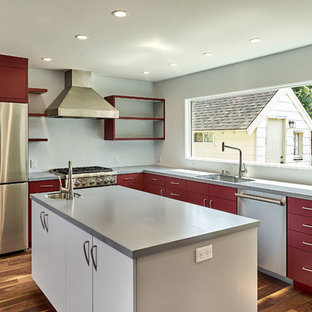 Red and Gray Kitchen
