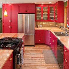 Contemporary Kitchen Red Contemporary Kitchen