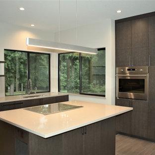 シアトルの大きいモダンスタイルのおしゃれなキッチン (ドロップインシンク、フラットパネル扉のキャビネット、グレーのキャビネット、クオーツストーンカウンター、グレーのキッチンパネル、シルバーの調理設備の、クッションフロア、グレーの床、白いキッチンカウンター) の写真