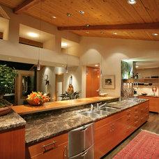 Contemporary Kitchen by Dan Curran Architecture, A.I.A.
