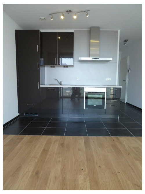 Studio Apartment Kitchen Houzz