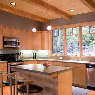 Diseño de cocina en L, contemporánea, con armarios con paneles lisos, puertas de armario de madera oscura, electrodomésticos de acero inoxidable, suelo de madera en tonos medios, una isla y suelo marrón