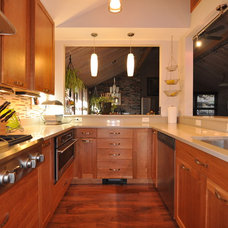 Contemporary Kitchen Cabinetry by Cabinet Fever