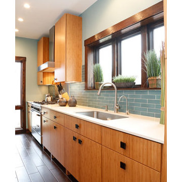 RIVER FOREST CONTEMPORARY BAMBOO KITCHEN