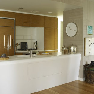 This is an example of a modern galley open plan kitchen in New York with flat-panel cabinets, light wood cabinets, solid surface benchtops and panelled appliances.