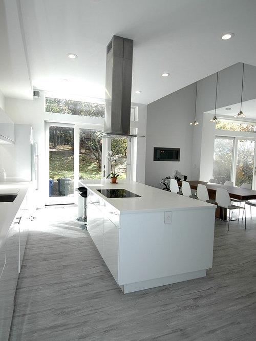 Modern kitchen design ideas renovations photos with for Modern linoleum flooring