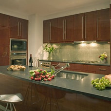 Contemporary Kitchen by Rosario Cabinets