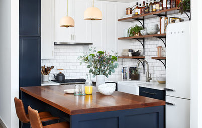 Kitchen of the Week: Wisconsin Cabin Inspires an Urban Condo