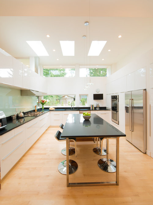 Flat Ceiling Skylight Home Design Ideas Remodel