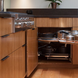 San Mateo residence : kitchen project