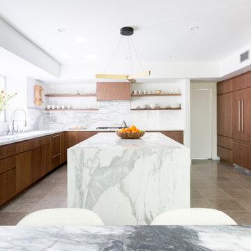 Santa Monica Contemporary Kitchen