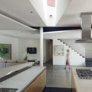 Modern open concept kitchen photos - Open concept kitchen - modern open concept kitchen idea in Los Angeles