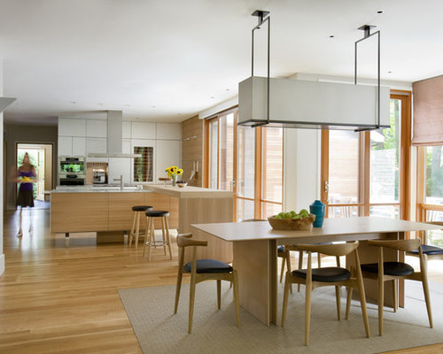 Scandinavian Kitchen Houzz