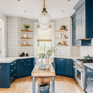 75 Beautiful U Shaped Kitchen With Blue Cabinets Pictures Ideas April 2021 Houzz