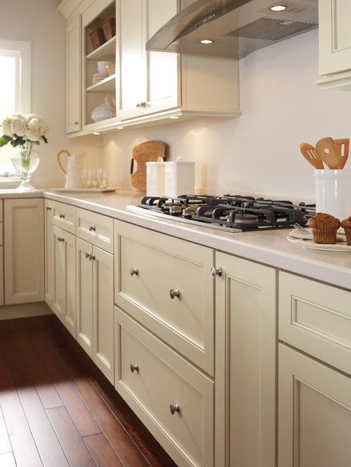 Example Of A Classic L Shaped Dark Wood Floor Enclosed Kitchen Design In  Boston With