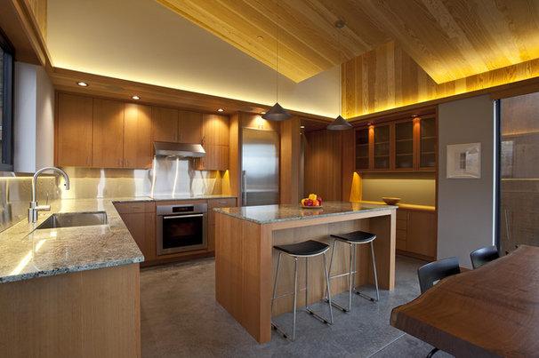 Contemporary Kitchen by Studio Bergtraun AIA