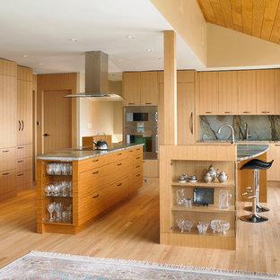 Imagen de cocina moderna con armarios con paneles lisos, puertas de armario de madera clara y electrodomésticos con paneles